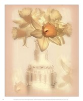 Lovely Daffodil Fine-Art Print