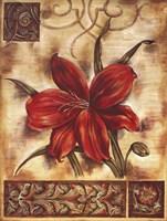Illuminated Lily II Fine-Art Print