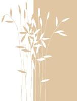 Reeds II Fine-Art Print