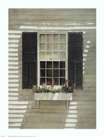 Nantucket Window Box Fine-Art Print