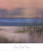 Sea Oats Two Fine-Art Print