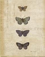 Botanical Butterflies I Fine-Art Print