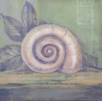 Tranquil Seashells III - Mini Fine-Art Print