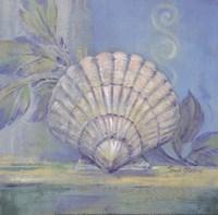 Tranquil Seashells IV - Mini Fine-Art Print