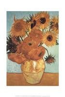 Sunflower on Blue, c.1888 Framed Print
