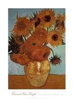 Sunflowers on Blue, c.1888 Fine-Art Print