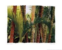 Bamboo Ballet Fine-Art Print