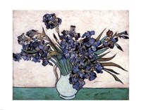 Irises in Vase, c.1890 Fine-Art Print