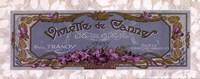 Violette De Cannes - Grande Fine-Art Print