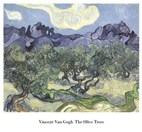 The Olive Trees, c.1889 (blue & green) Fine-Art Print