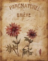 Parcnaturel I - Mini Fine-Art Print