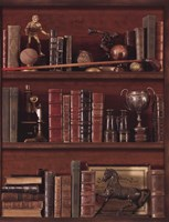 Librairie IV - Mini Fine-Art Print