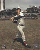 Ted Williams - Posed Batting Fine-Art Print