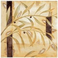 Olive Branch II Fine-Art Print