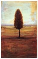 Solitaire II Fine-Art Print