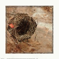 Nest Red Leaf Fine-Art Print