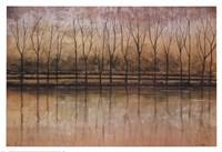 Reflective Waters Fine-Art Print