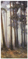 Silver Trees II Fine-Art Print