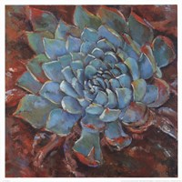 Blue Agave II Fine-Art Print