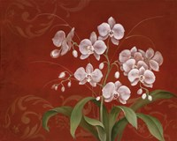 Say it with Orchids II Fine-Art Print