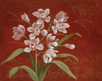 Say it with Orchids I Fine-Art Print