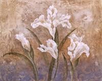 Fleurs Meditatives I Fine-Art Print