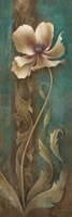 Gracieux II Fine-Art Print