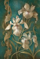 Irises on Teal Fine-Art Print