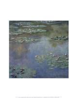 Water Lilies (II), 1907 Fine-Art Print