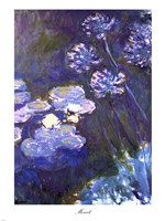 Water Lilies and Agapanthus, 1914-1917 Fine-Art Print