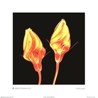 Electric Flowers No. 2 Fine-Art Print