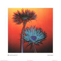 Acid Flowers No. 1 Fine-Art Print