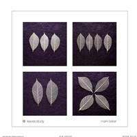 Leaves Study Fine-Art Print