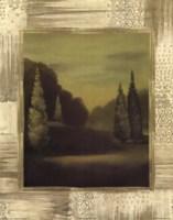 Forest Solitude Fine-Art Print