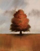 Lonely Oak Fine-Art Print