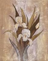 Summer Iris II Fine-Art Print