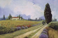 Holiday in Tuscany Fine-Art Print