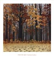 Autumn Wood Fine-Art Print