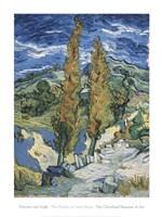 The Poplars at Saint-Rmy, c.1889 Fine-Art Print