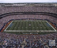 Giants Stadium 2007 Fine-Art Print