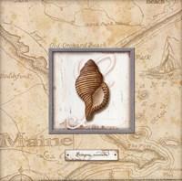 Sea Treasure IV - mini Fine-Art Print