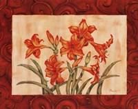Linen Scroll Amaryllis Fine-Art Print