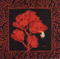 Sea Fan II Fine-Art Print