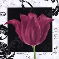 Damask Tulip IV Fine-Art Print