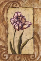 Classic Tulip I Fine-Art Print