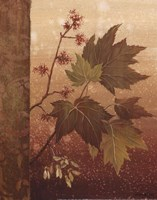 Maple Leaves - mini Fine-Art Print