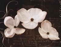 Garden Love Letter I Fine-Art Print