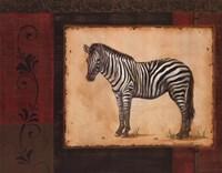 Savanna Zebra Fine-Art Print