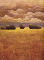Golden Fields II Fine-Art Print