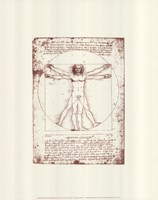 The Vitruvian Man (serigraph and embossed) Serigraph